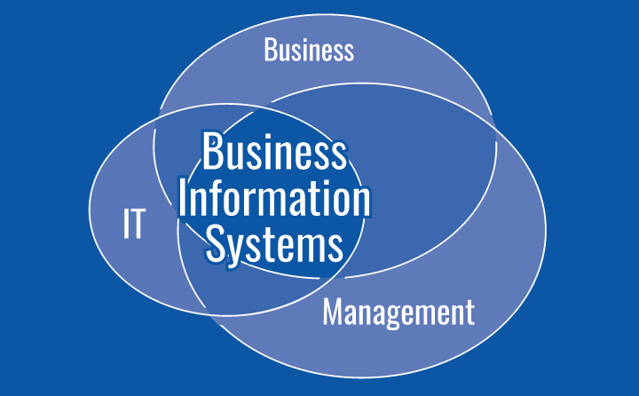 BIS601/BIS400 Business Information System
